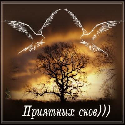 Приятных картинок снов тебе мой милый...
