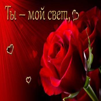 Ты моя роза