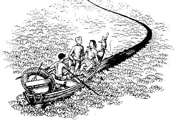 Иллюстрация 2 «Покоритель зари», или Плавание на край света