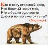 Загадка про медведя