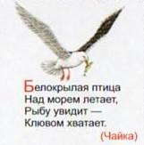 Загадка про чайку