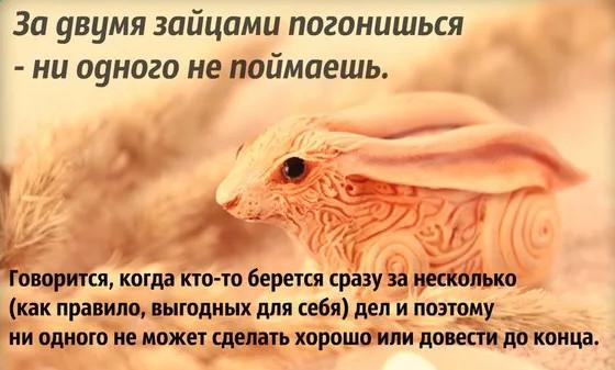Про двух зайцев