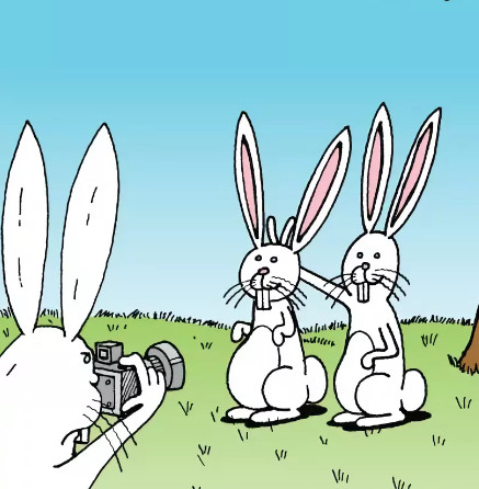 Зайцы шутят