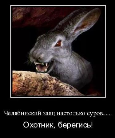 Челябинский зайчик
