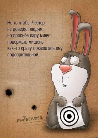 Прикол про зайца Честера